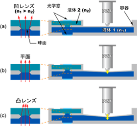 Cross-sectional figure of DML and it's focusing mechanism