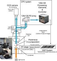 MVF system diagram